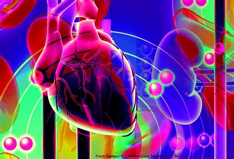 MyHeart: Your Guide to Heart Health