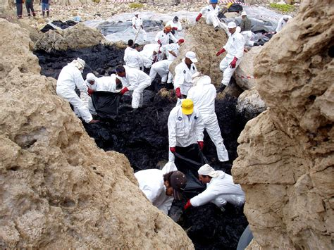 Free picture: oil, spill, cleanup, cleaning, coastal